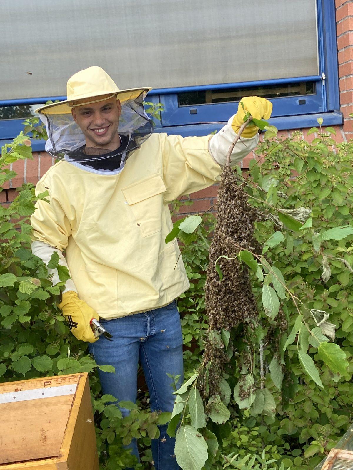 Praktische Umweltbildung am Bienenvolk